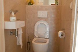 Vernieuwen van toilet
